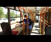 Общественный транспорт заработал