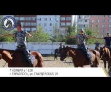 Динамо Триумф – 7 ноября