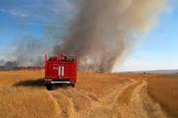 Пожар в поле