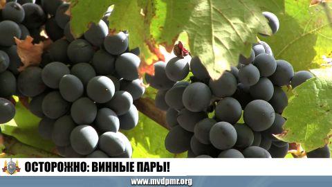 Осторожно: винные пары!