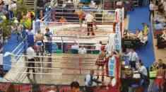 Чемпион мира по кикбоксингу из СМВЧ
