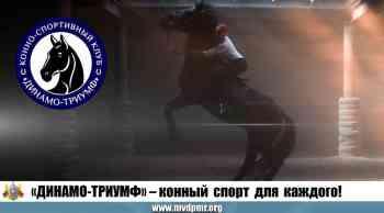 «Динамо-Триумф» – конный спорт для каждого!